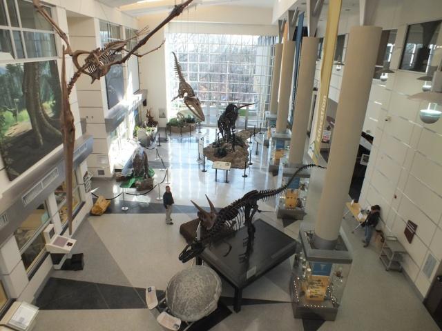 Dino Day 2013 VMNH Martinsville, VA